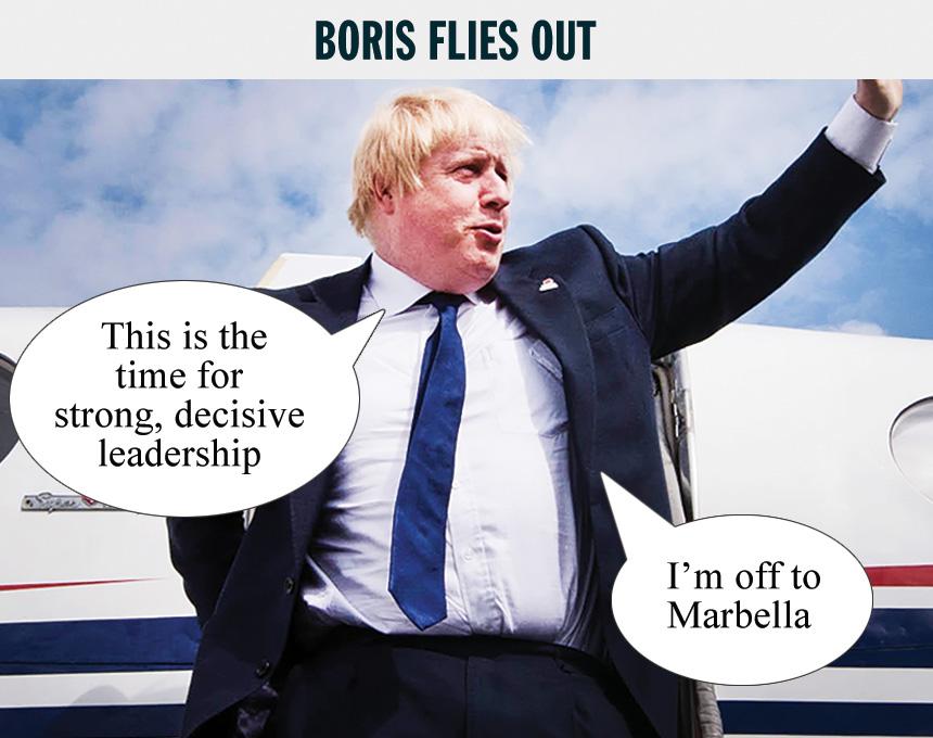 boris-flies.jpg