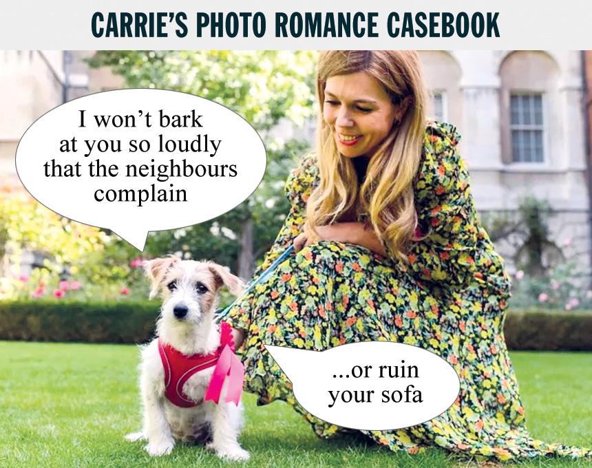 carrie-dog.jpg