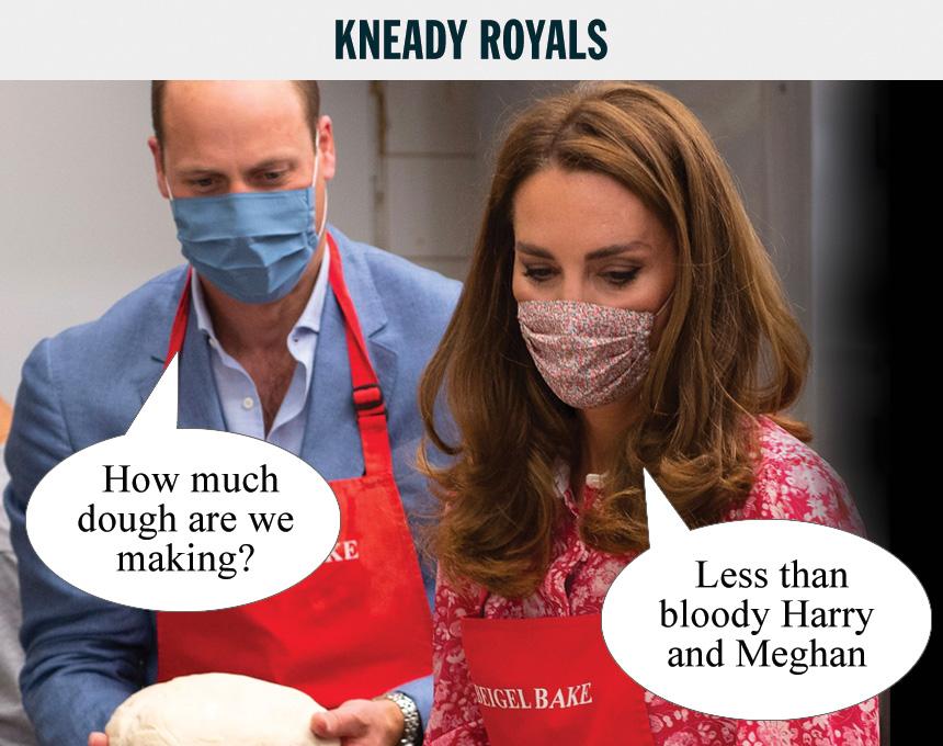 kneady-royals.jpg