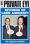 David Cameron Michael Ashcroft