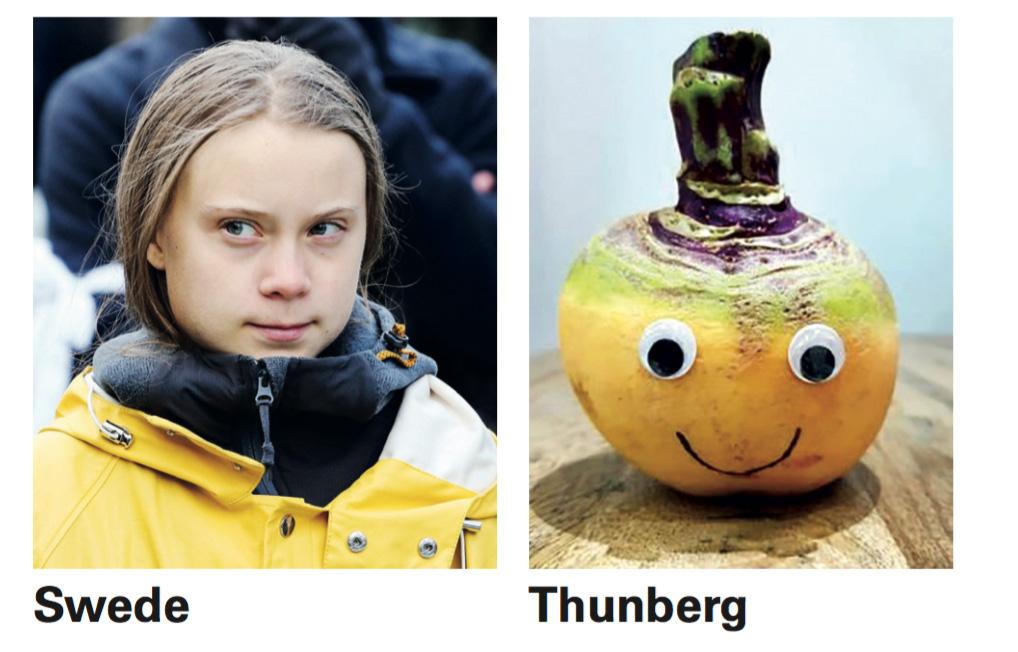 swede-thunberg.jpg
