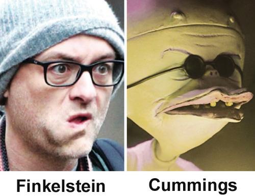 cummings-finkelstein.jpg