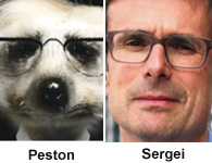 peston-sergei.jpg