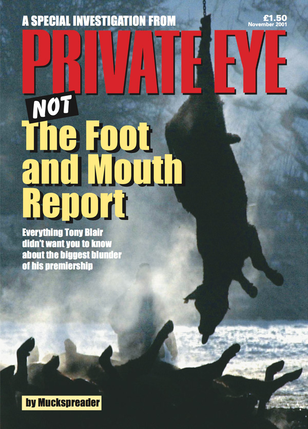 Not The Foot And Mouth Report